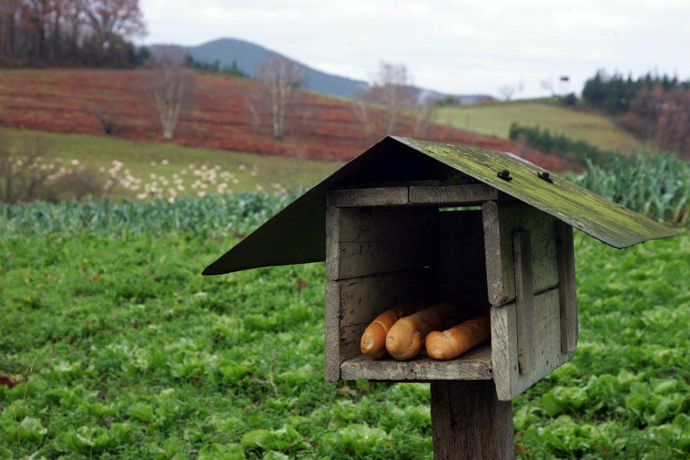 basque-country_5