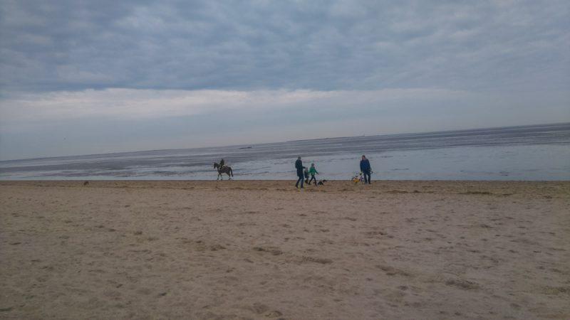 north-sea-10