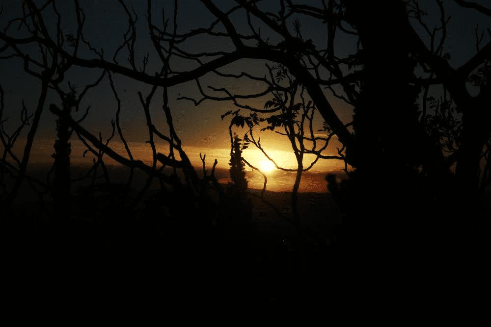Μετά τη βροχή/φωτό: Σπύρος Τσακίρης